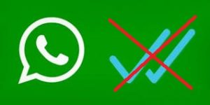 cara menghilangkan centang biru whatsapp