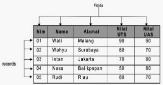 pengertian field dam record dalam basis data
