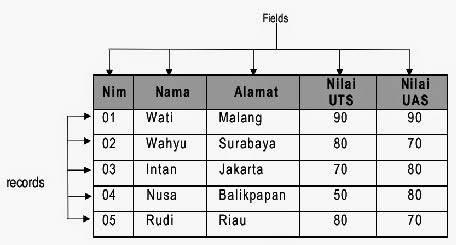 pengertian field dam record dalam basis data